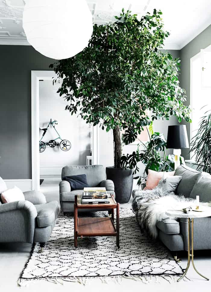 eclectic-style-living-room